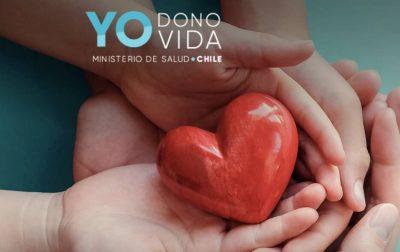 yodono-1
